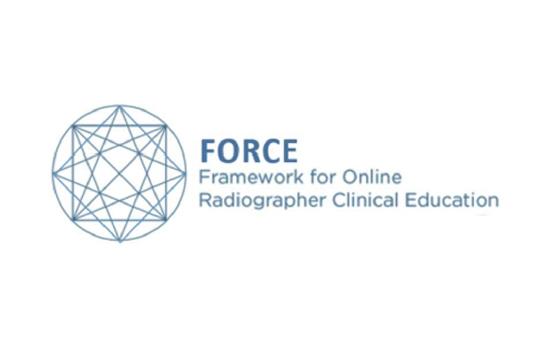 ESS | P. PORTO envolvida em projeto internacional para o desenvolvimento de soluções digitais para educação clínica